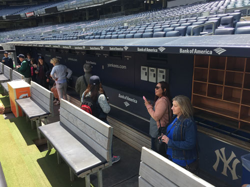 The dugout at Yankees Stadium