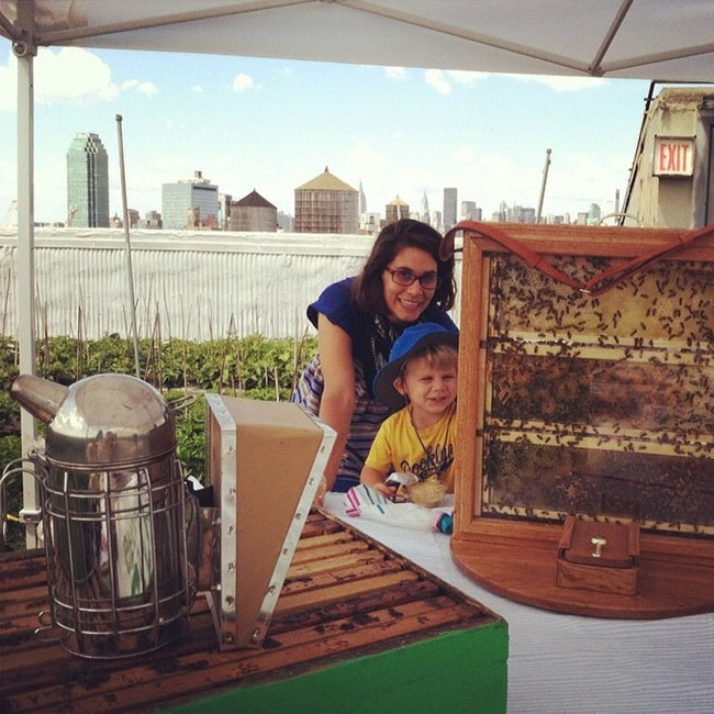 family farm day brooklyn grange city growers