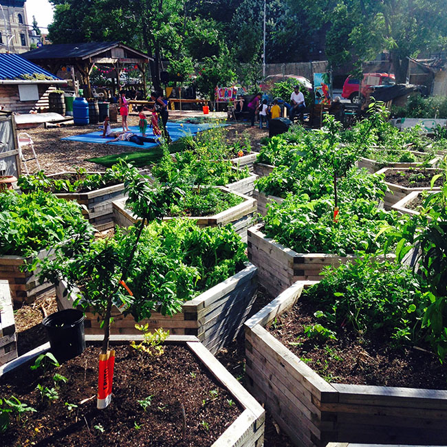 bushwick city farm