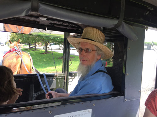 A buggy ride with our Amish tour guide