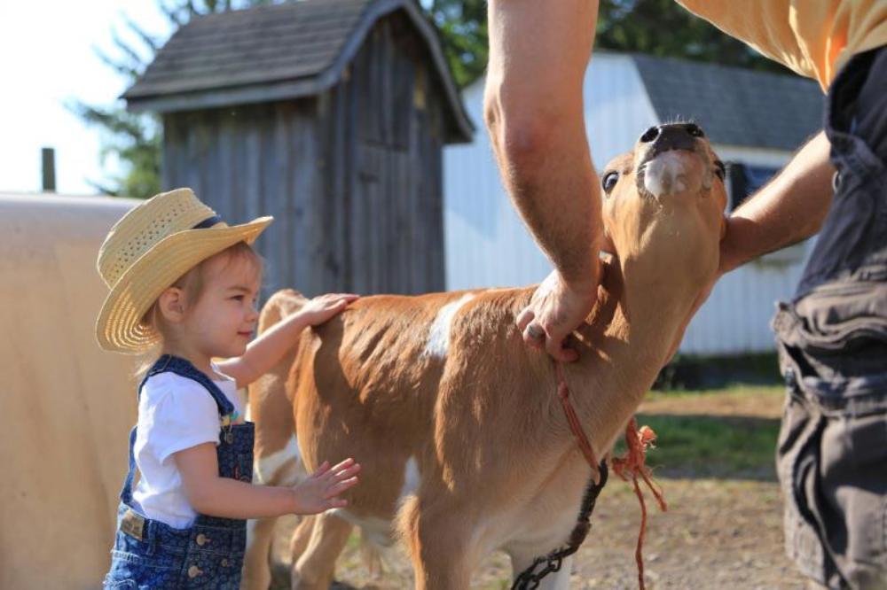 Hull-O Farms Farm Stay Vacations -