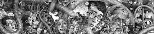 20 Harry Potter Brian Selznick artwork