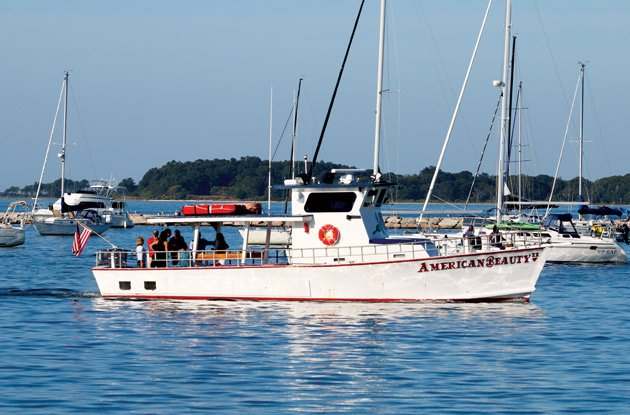 american beauty 2 cruises
