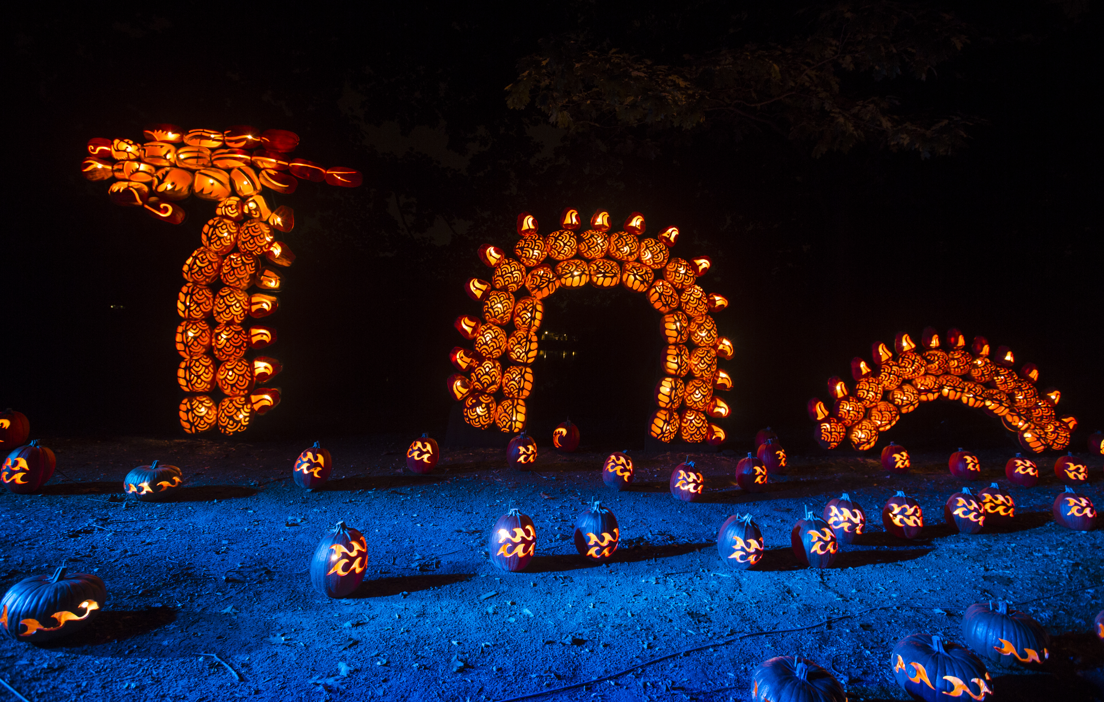 Jack O Lantern Blaze How To Get There