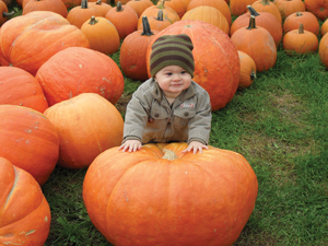 baby at pumpkin picking farm