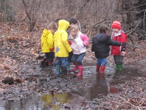 nature kids nursery school at center for science teaching and learning on long island