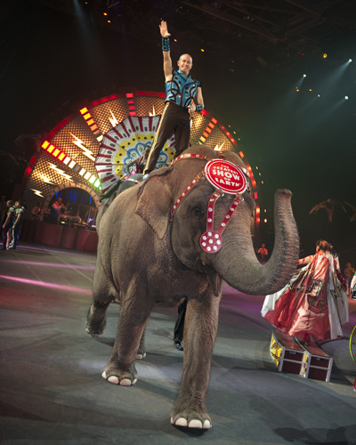 Taba on elephant; ringling bros. and barnum & bailey circus, Fully Charged