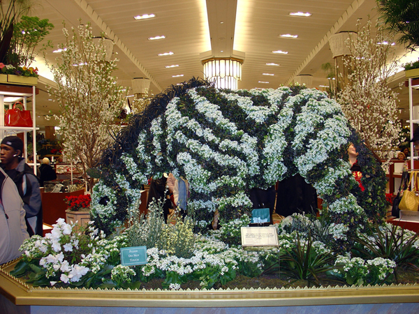 A floral zebra on display as part of Macy's Flower Show at Herald Square location.