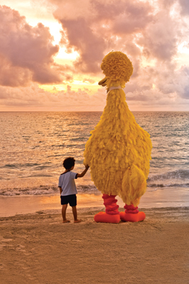 Big Bird and little boy on the beach at sunset