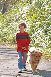 boy walks dog