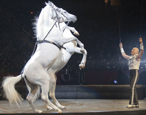 Ringling Bros. and Barnum & Bailey Fully Charged circus