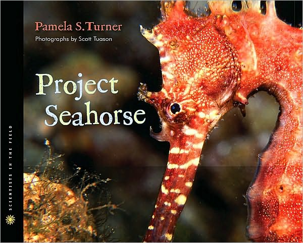 project-seahorse, summer-reading-book