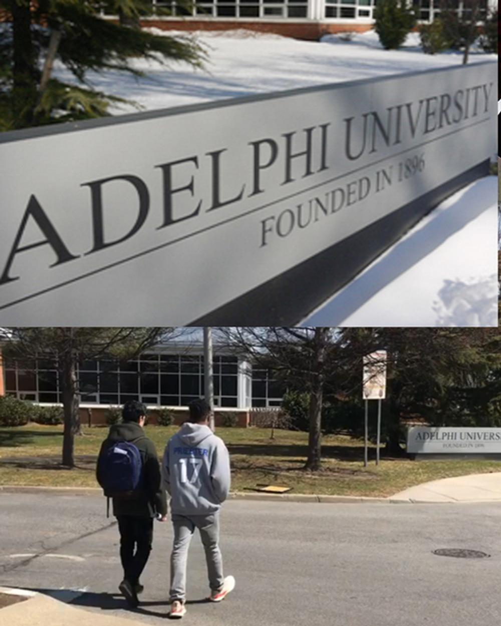 Adelphi Partnership Program