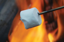 roasting marshmallow by a campfire