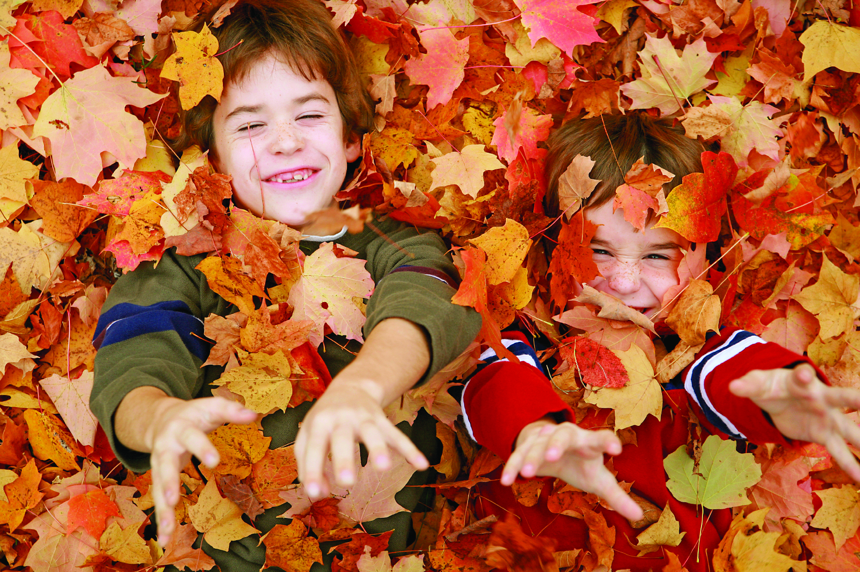 Two young boys laying down in a pile of autumn leaves