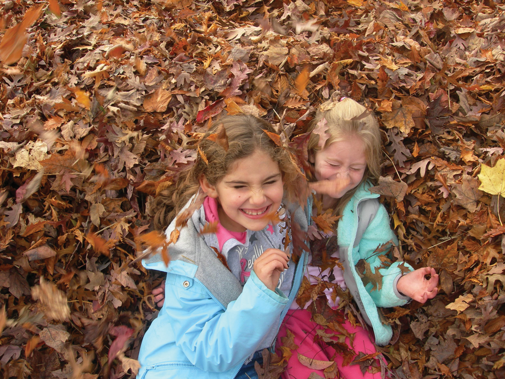 kids in a leaf pile