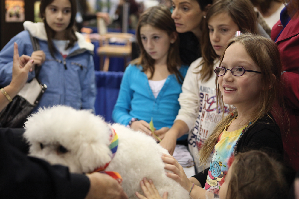 Photo by gilles mingasson courtesy of american kennel club for Things to do with kids in manhattan