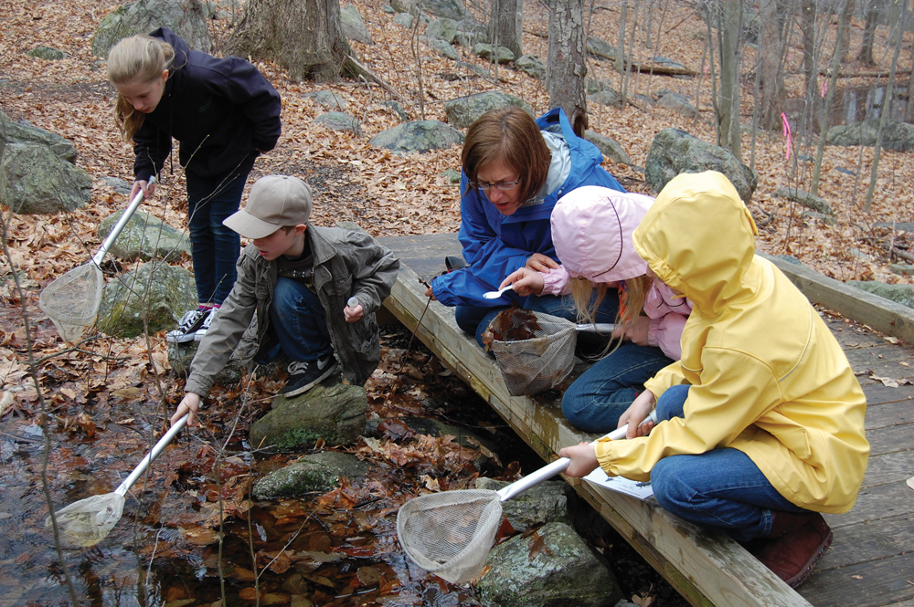 kids nature hike at stamford museum and nature center