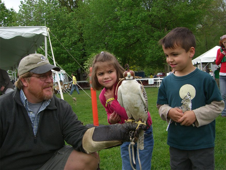 birds of prey day