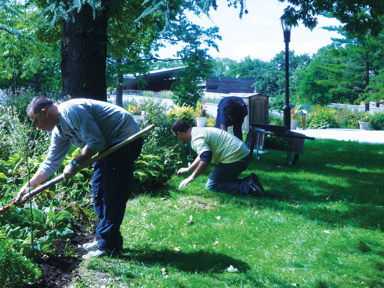 volunteer day at queens botanical garden