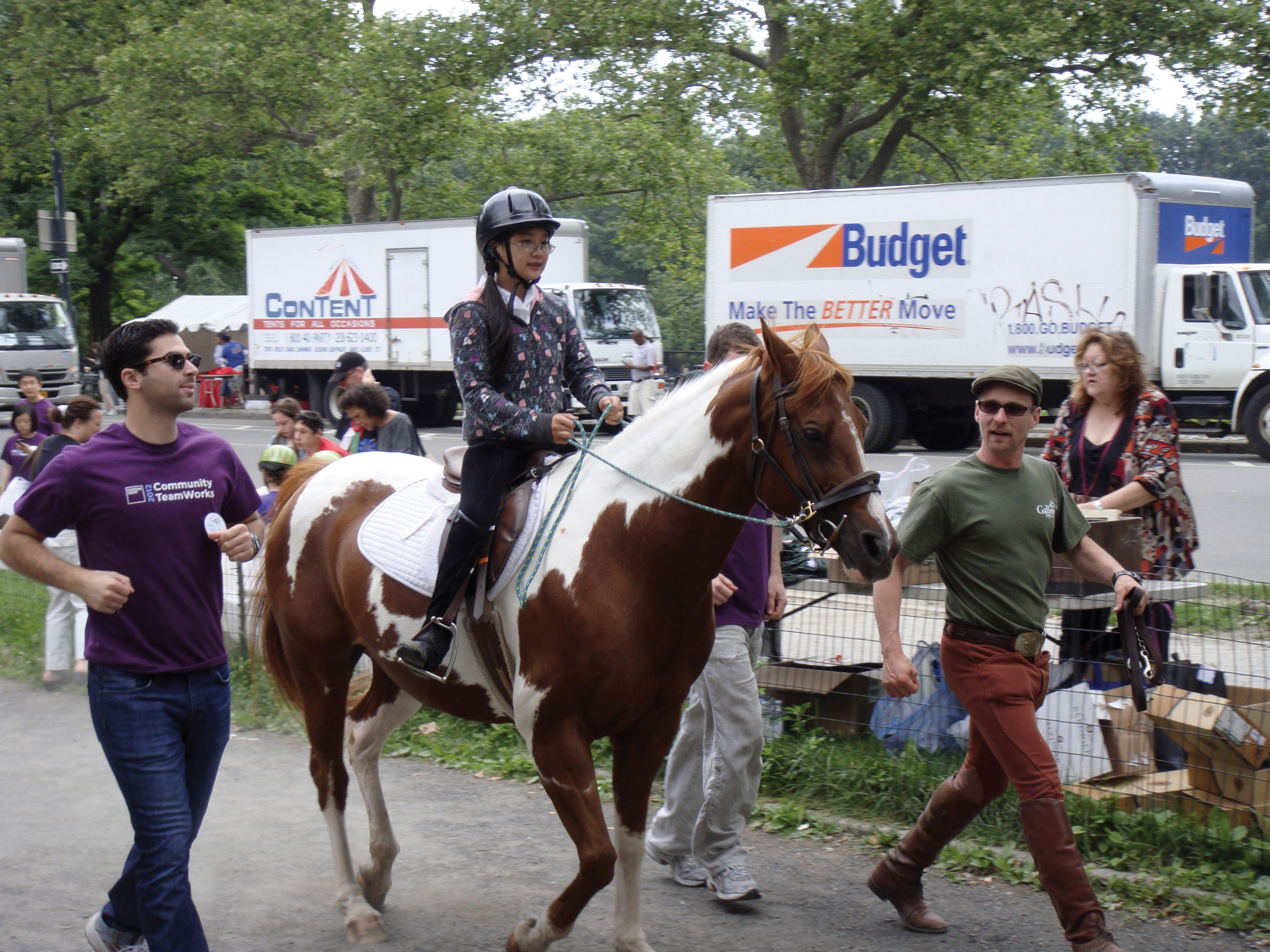 GallopNYC horse show in central park