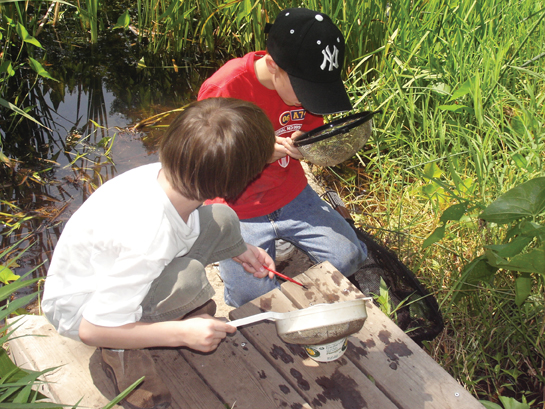 Greenwich Audubon kids program