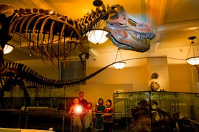 museum of natural history sleepover - Halloween For Kids In Nyc