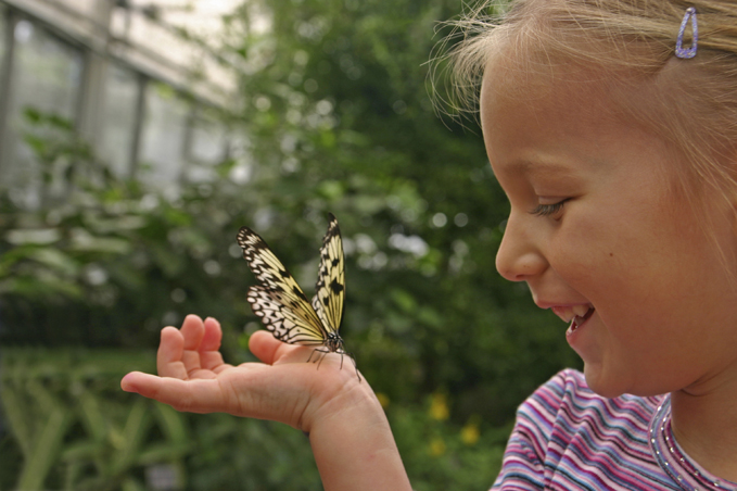 Curious Child with Butterfly