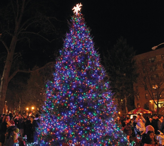 White Plains tree lighting