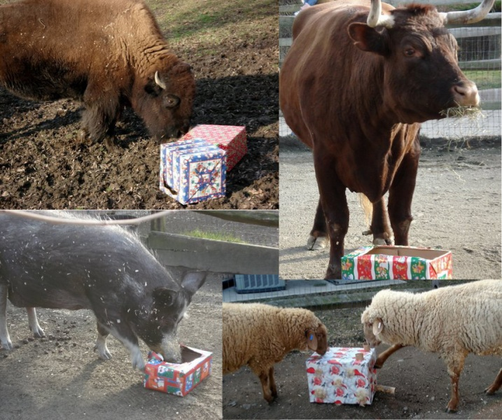Holiday with the Animals at Bergen County Zoo
