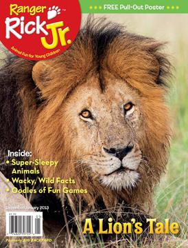 Ranger Rick Jr. magazine December 2012 issue