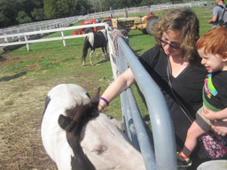 mother and child petting a horse
