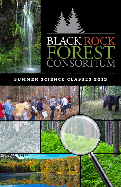 black rock forest summer science classes