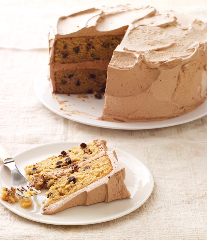chocolate chip layer cake with chocolate mocha frosting