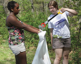 rockland community cleanup