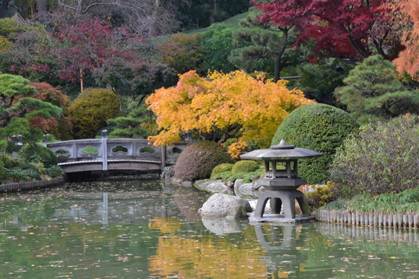 A view of the Japanese Garden at Brooklyn Botanic Garden.