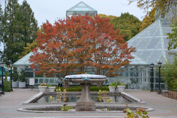 A beautiful fountain at Brooklyn Botanic Garden.