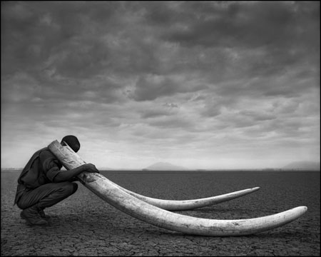 Nick Brandt - Across the Ravaged Land