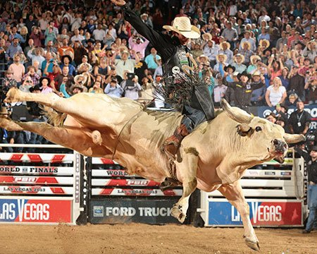 Buckle up new york join the professional bull riders at - Bull riding madison square garden ...