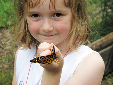 butterfly exhibit at gnc
