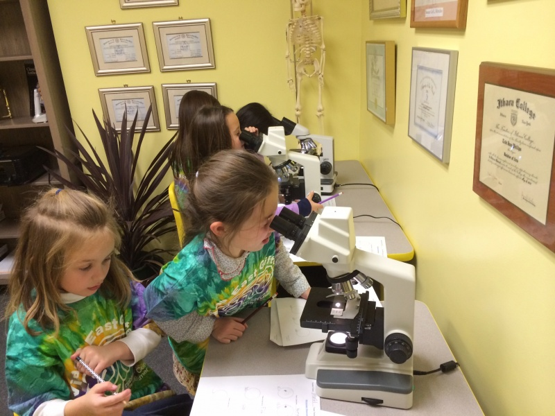 young students using microscopes at Village East Gifted