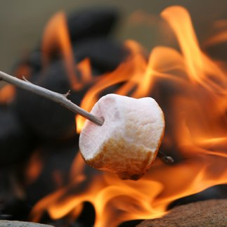 toasting smores on campfire