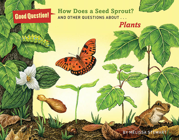 how does a seed sprout book cover