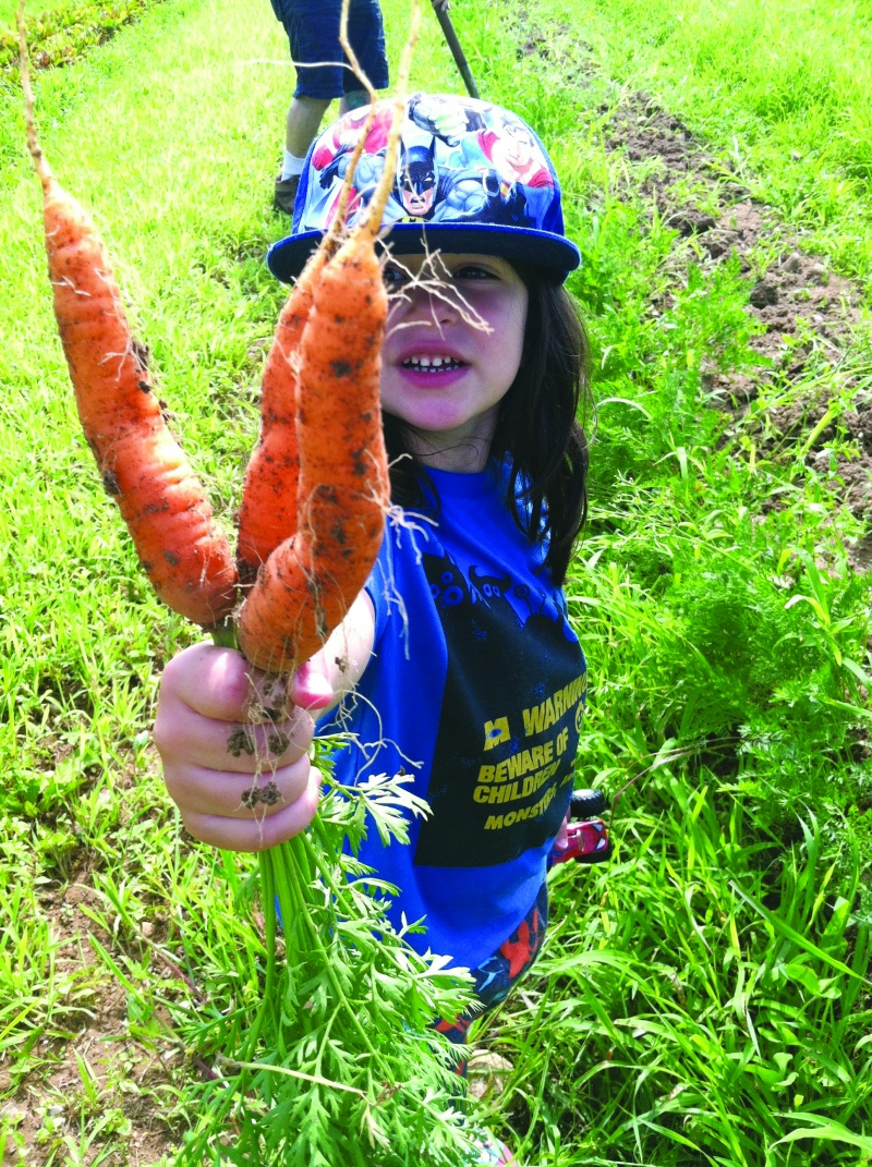 little girl holding carrots