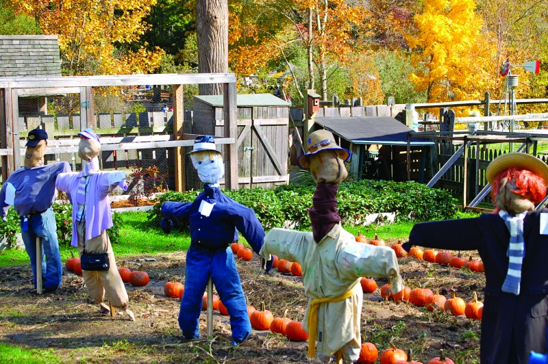 scarecrow festival stamford nature center ct