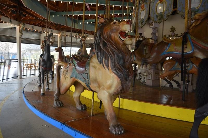 lion on the forest park carousel