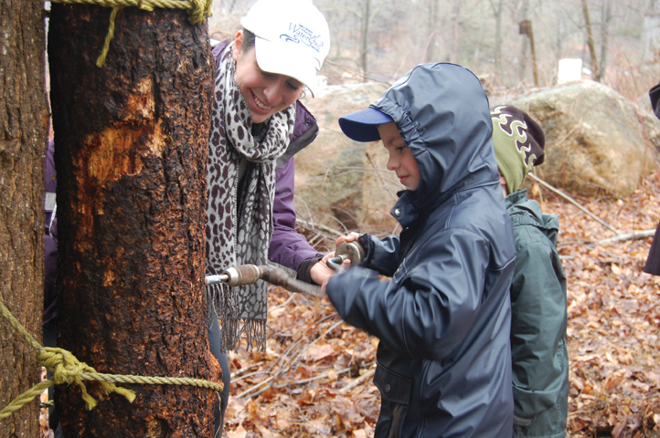 maple sugaring at stamford nature center ct