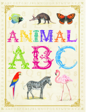 animal abc book